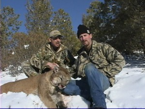 mountain lion hunts in new mexico